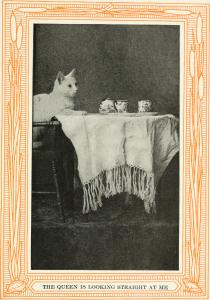 Credit: Internet Archive Book Images collection